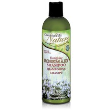 Conceived By Nature Fortifying Rosemary Shampoo (1x11.5 Oz)